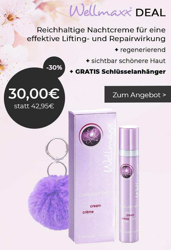 WELLMAXX Angebot