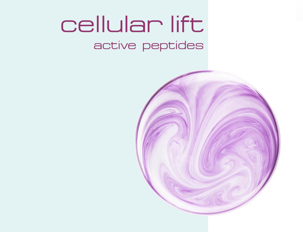 WELLMAXX cellular lift Einkaufswelt